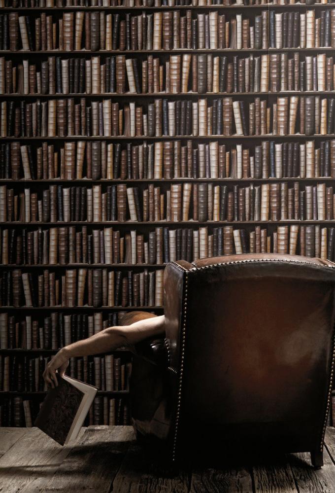 Bookcase Wallpaper   The Green Head 680x1000