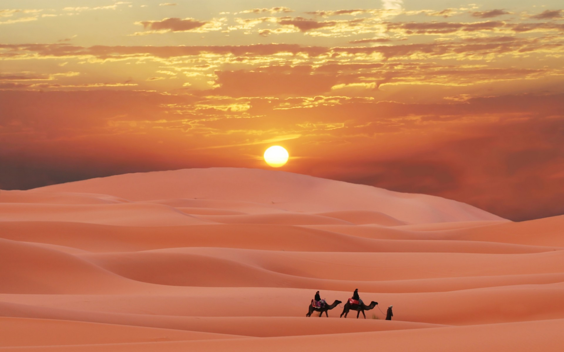 Free Download Sahara Desert Morocco Berber Sunset Camel Sand