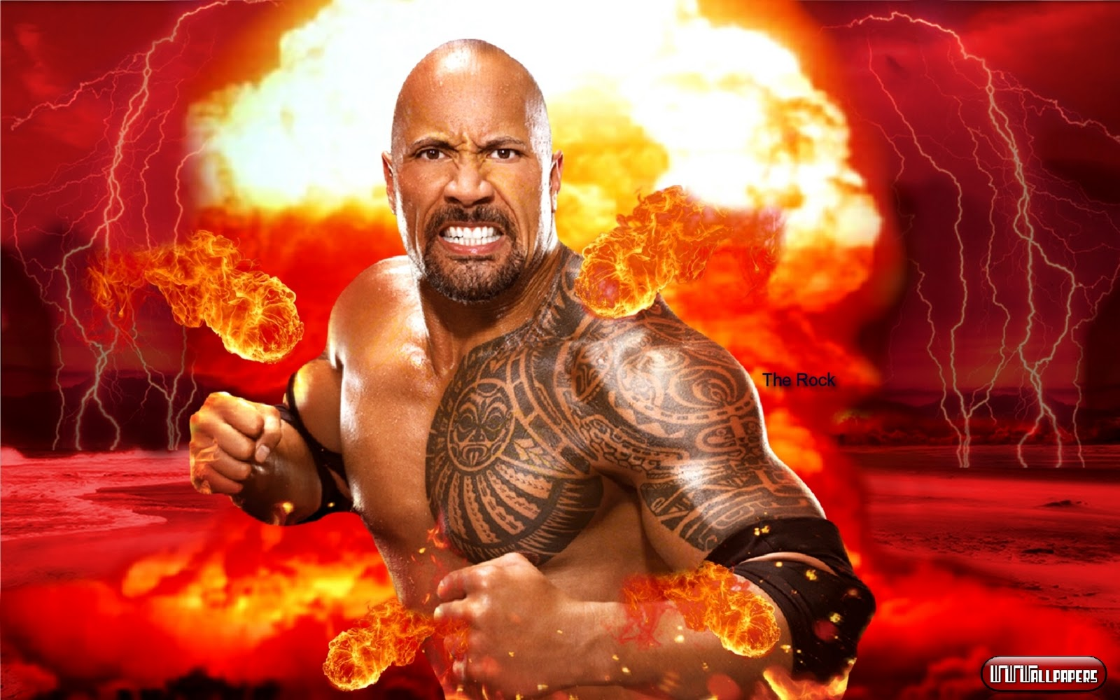 Sports Players Wwe The Rock HD Wallpapers 2012 1600x1000