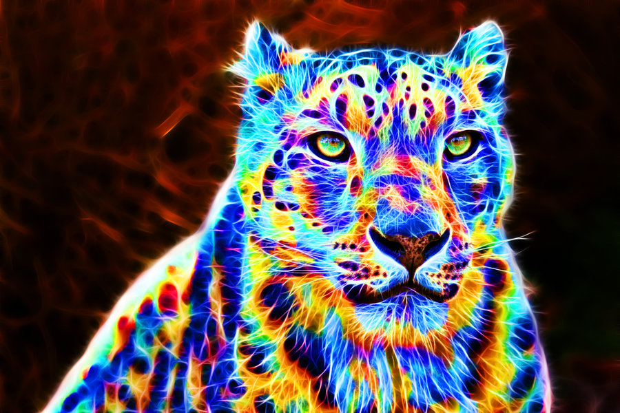 Pin Fractal Cheetah Wallpaper 900x600