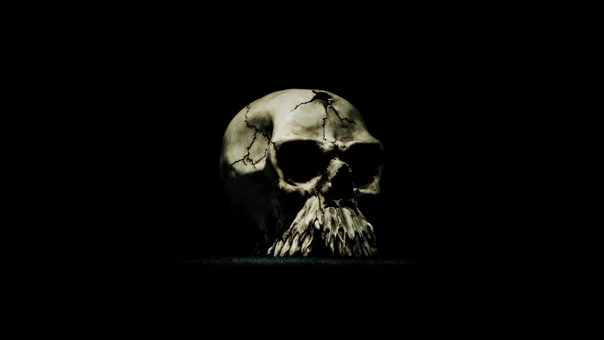 Skull Wallpaper Hd wallpaper   300933 1920x1080