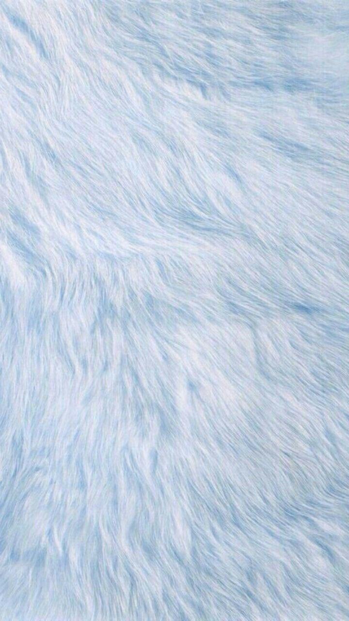 Free Download White Fur Wallpaper Wallpaper Baby Blue
