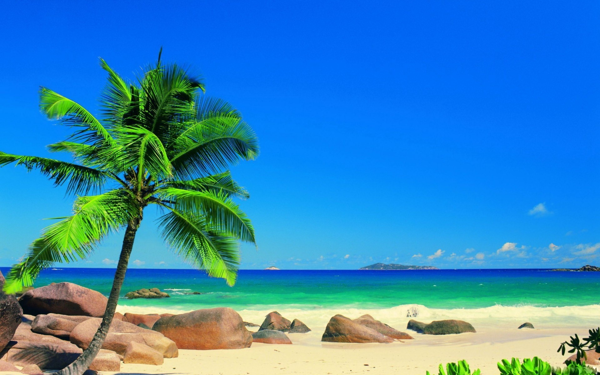 Tropical Beaches In Florida Hd Wallpapers 1920x1200