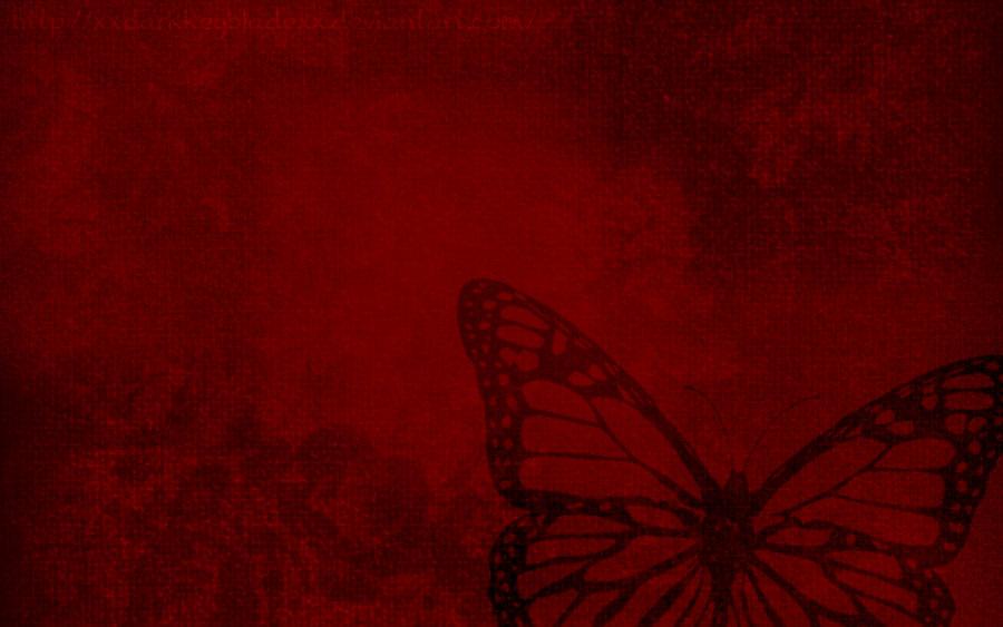 Red Butterfly Wallpaper by xXDarkKeybladeXx 900x563