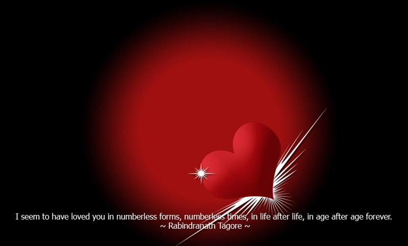 love wallpapers love quotes download love quotes phone love quotes 800x483