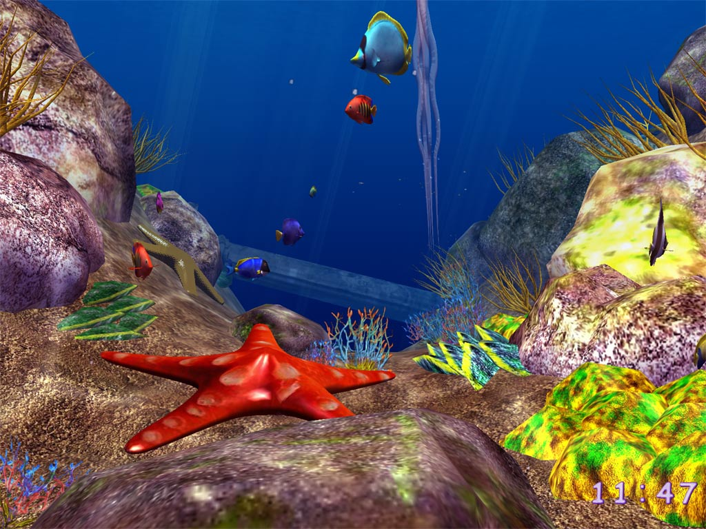 Ocean Fish 3D Screensaver   plunge your computer into the depth of the 1024x768