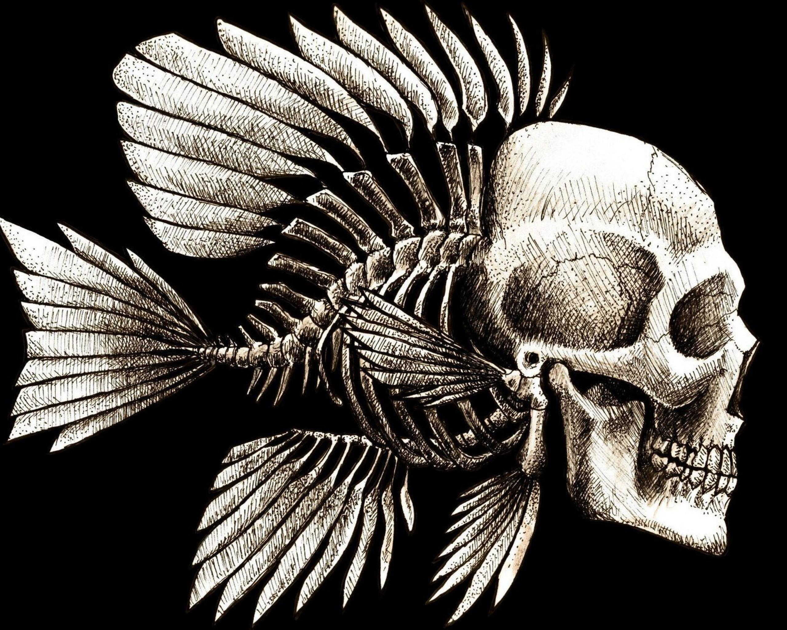 Skull And Bones Wallpaper