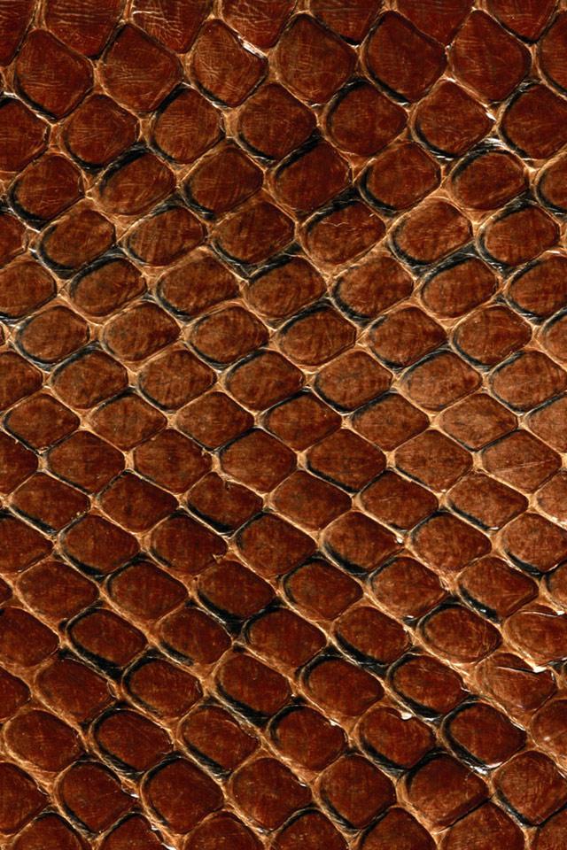 Snake Skin iPhone Wallpaper 640x960