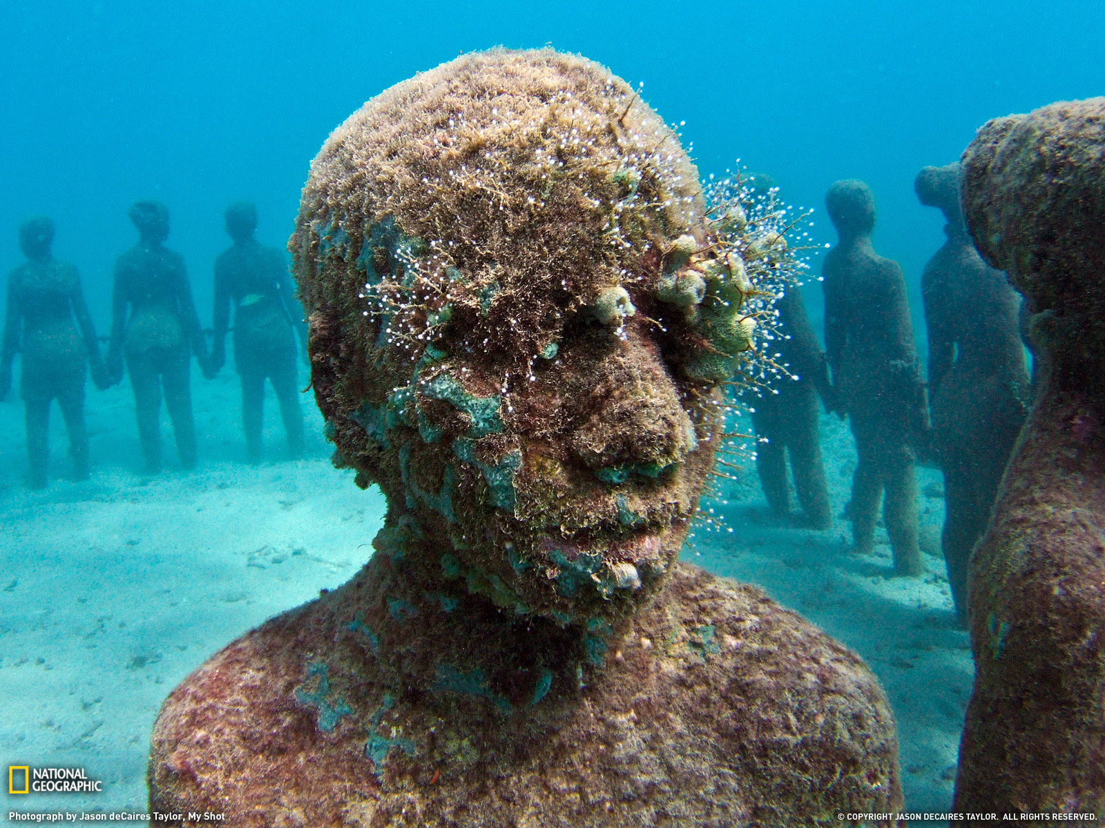 Grenada Picture Underwater Wallpaper National Geographic Photo 1600x1200