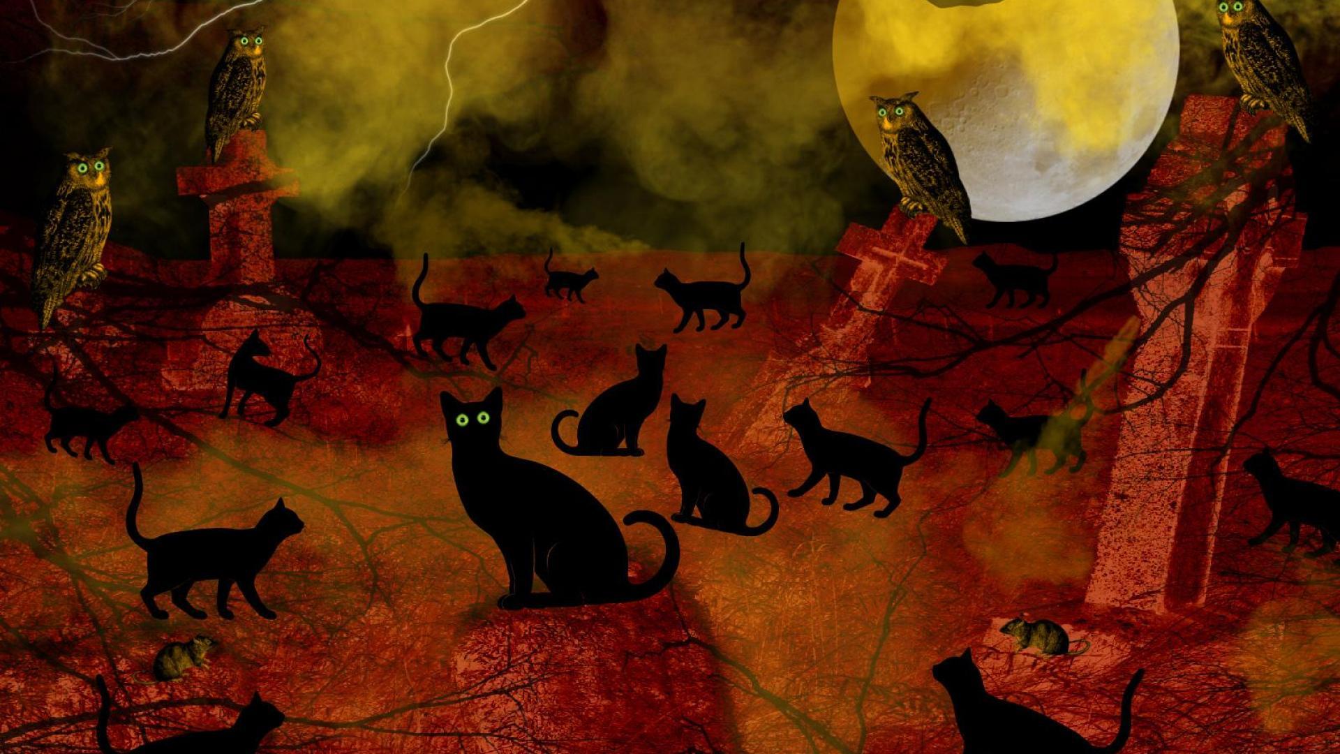 43 hd widescreen wallpaper halloween cats on wallpapersafari - Free widescreen halloween wallpaper ...