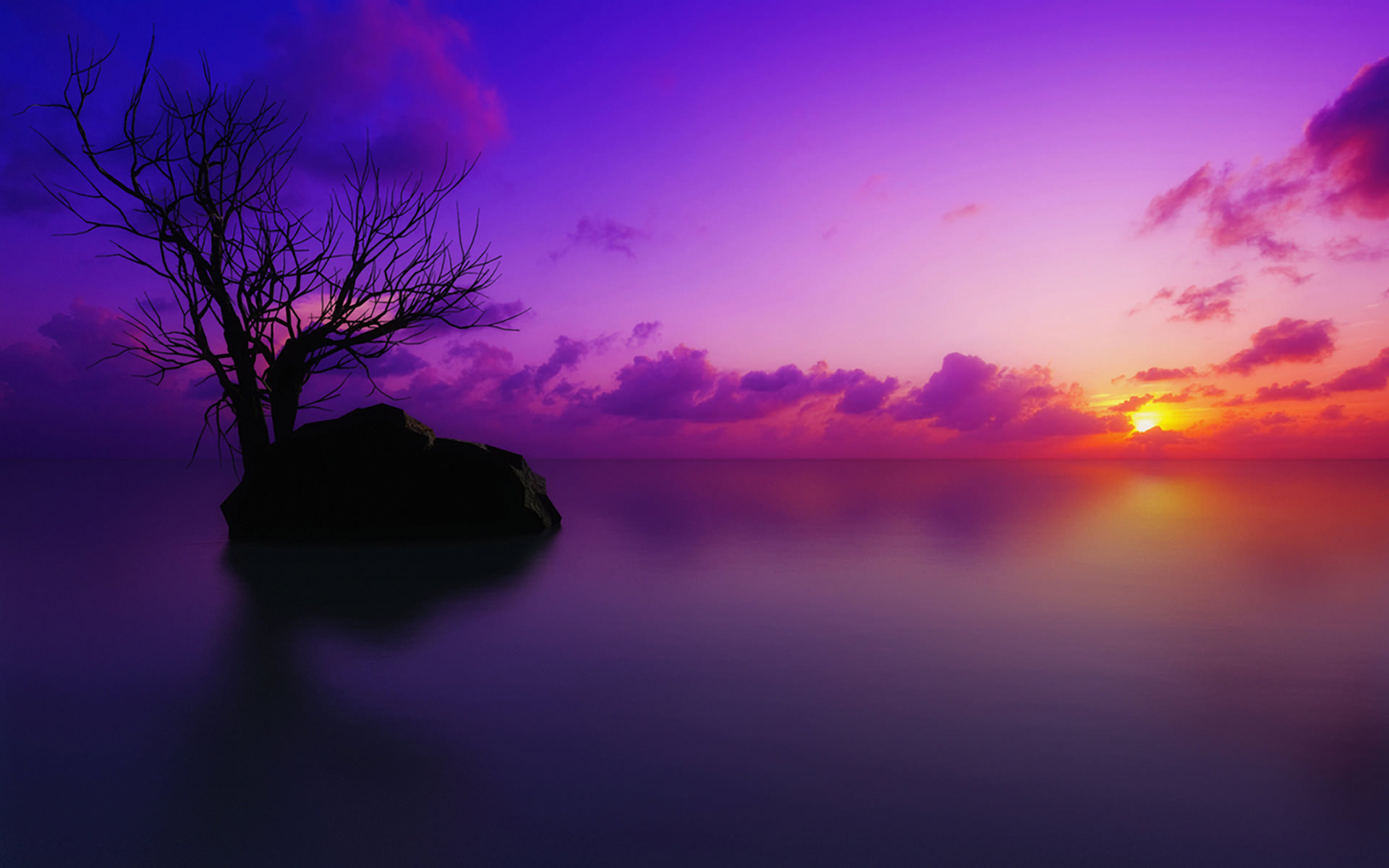 purple sunset wallpaper 1920x1200 1006112jpg 1920x1200