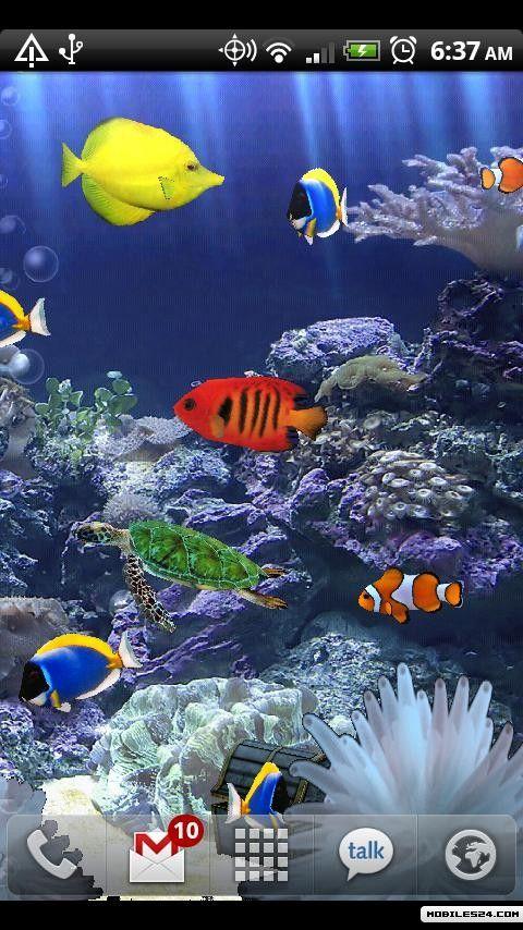 Live Wallpaper Android App download   Download the Aquarium 480x854