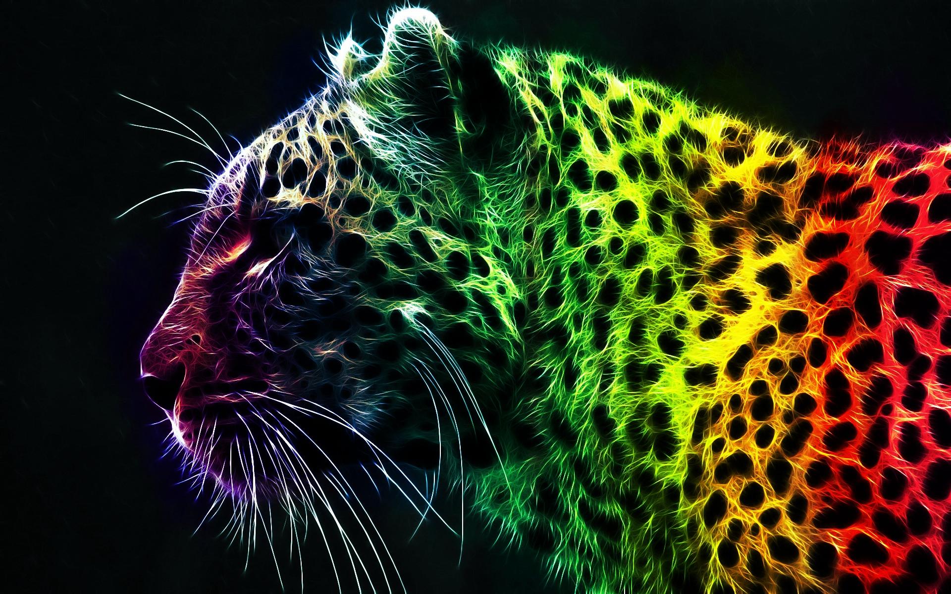 colorful desktop background wallpapersafari