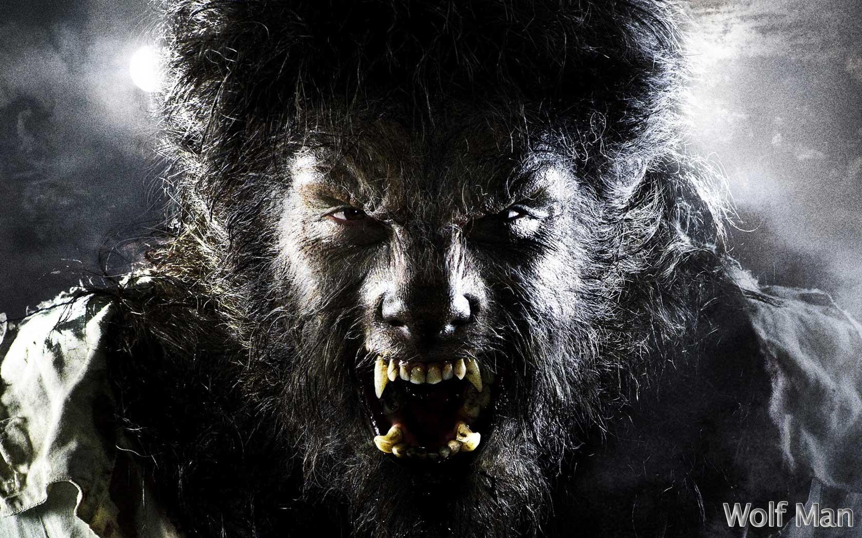Van Helsing Werewolf Wallpaper wallpaper Van Helsing Werewolf 1680x1050