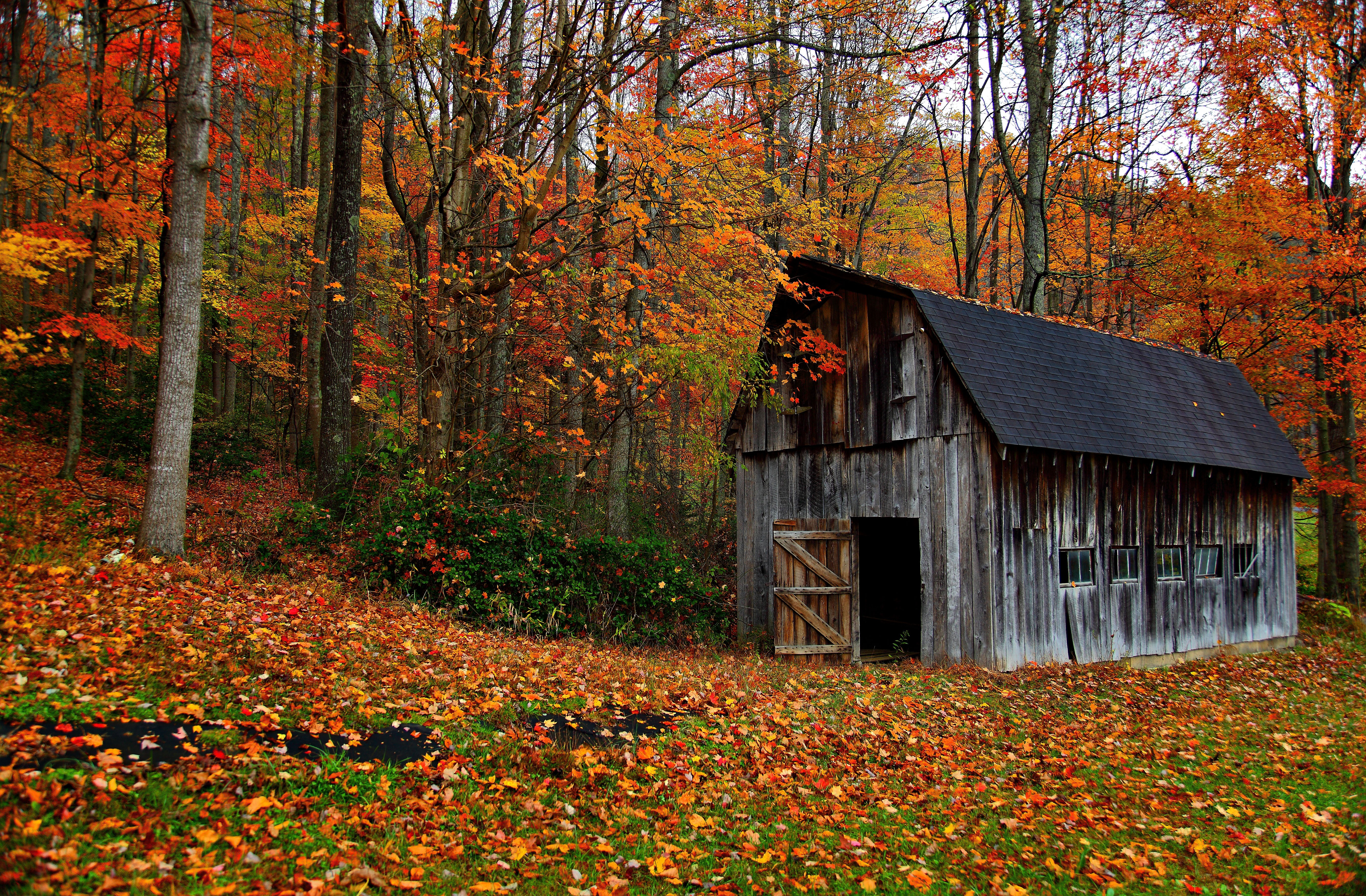 FileAutumn country barn   Virginia   ForestWanderjpg   Wikimedia 5522x3622