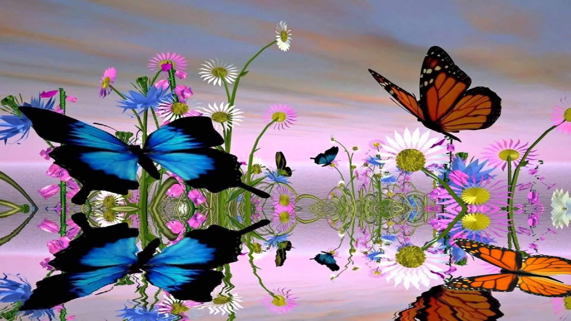 Fantastic Butterfly Screensaver httpwwwscreensavergiftcom 1920x1080