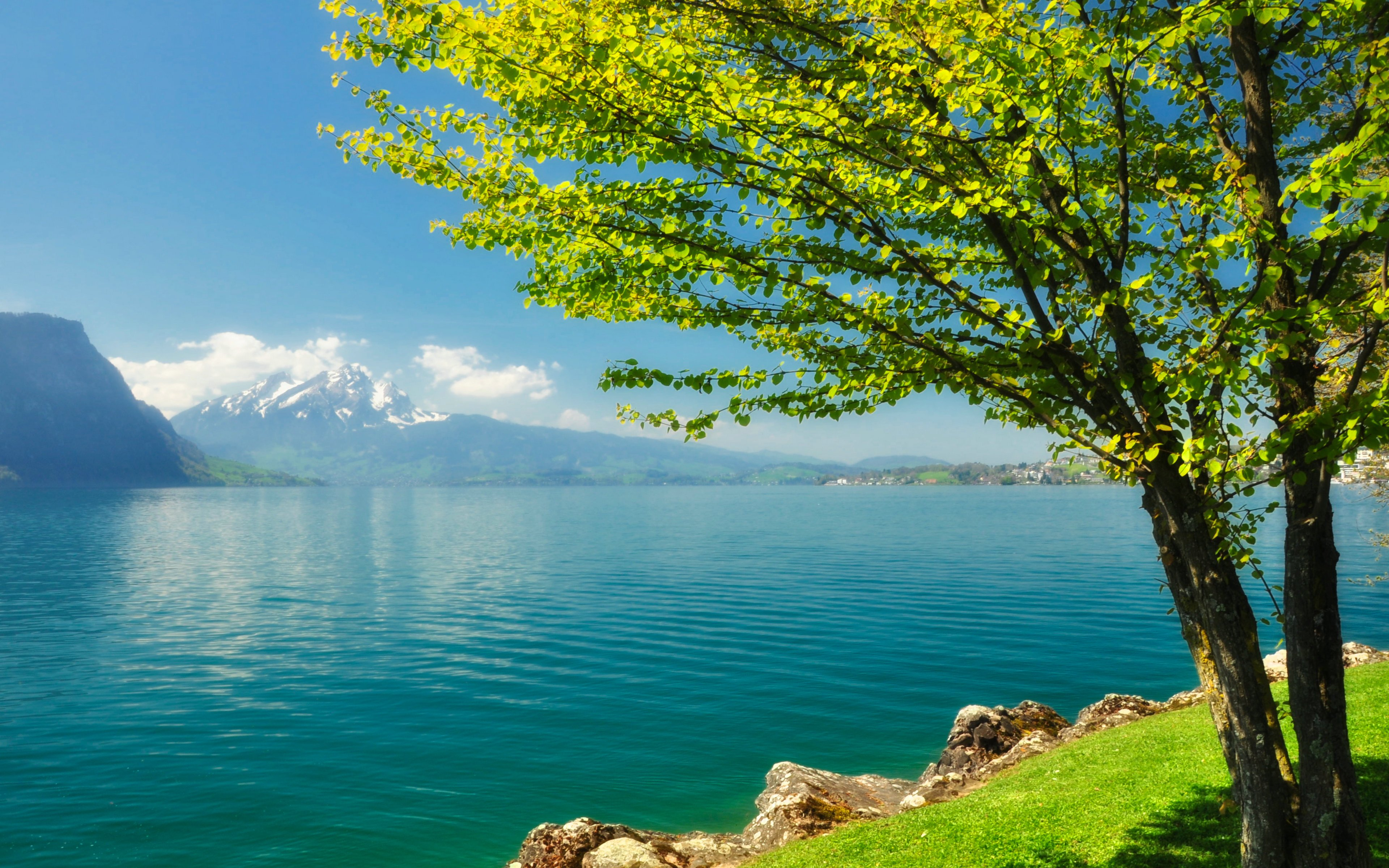 Download Spring Scenery 6392 3840x2400 px High Resolution Wallpaper 3840x2400