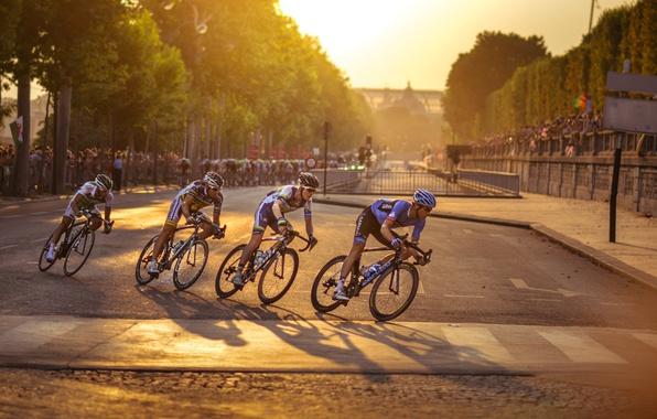 Wallpaper for Tour De France through Paris cyclist 596x380