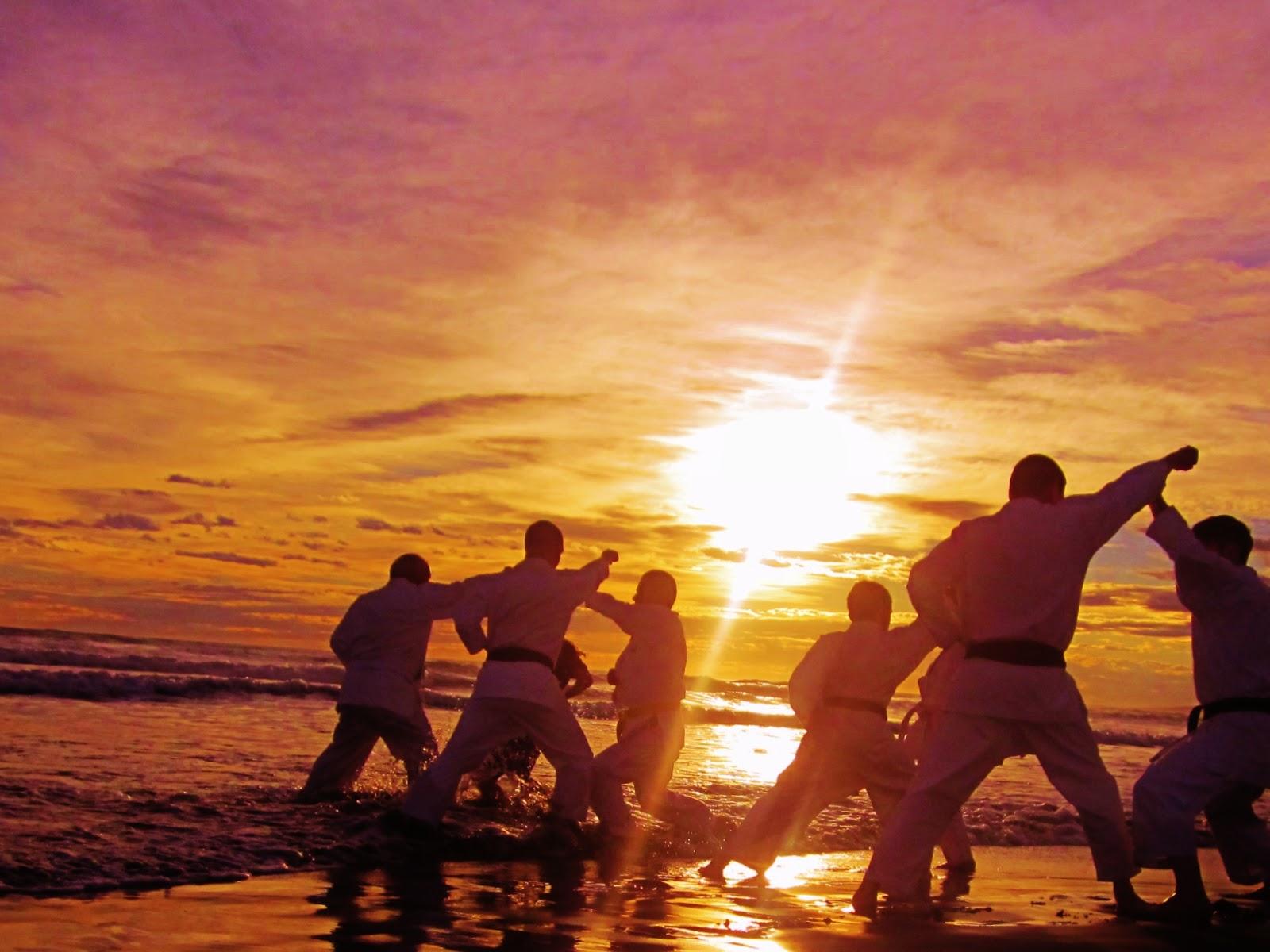 Free Download Shotokan Karate Wallpaper Christchurch