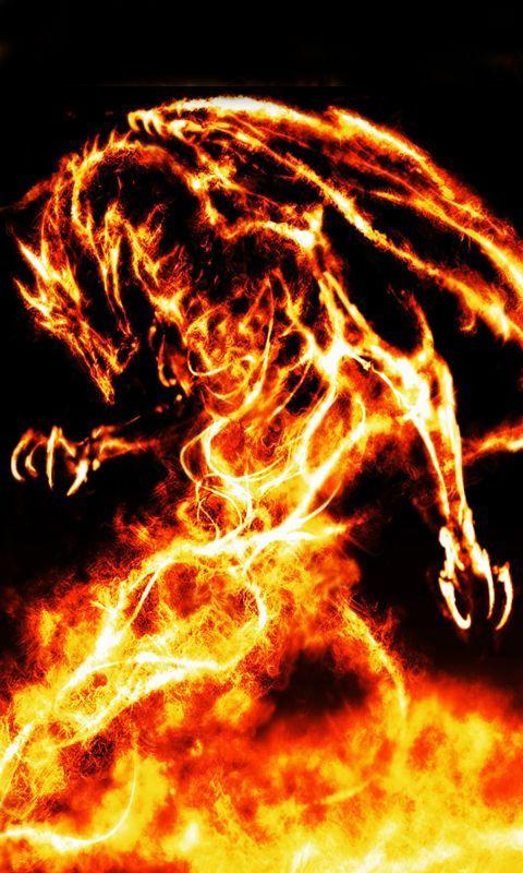 dragon480x800800x480freehotmobile phone wallpaperswwwwallpaper 480x800