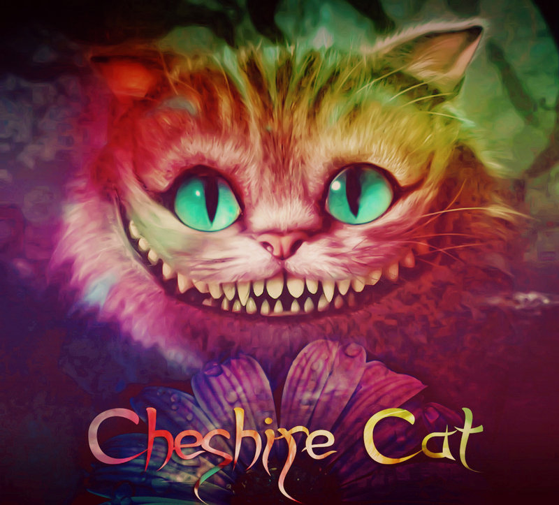 cheshire cat by alina carrie 800x723