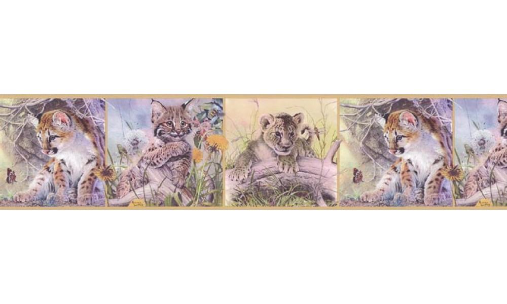 Home Animal Borders Wild Cats Animals Wallpaper Border B76371 1000x600