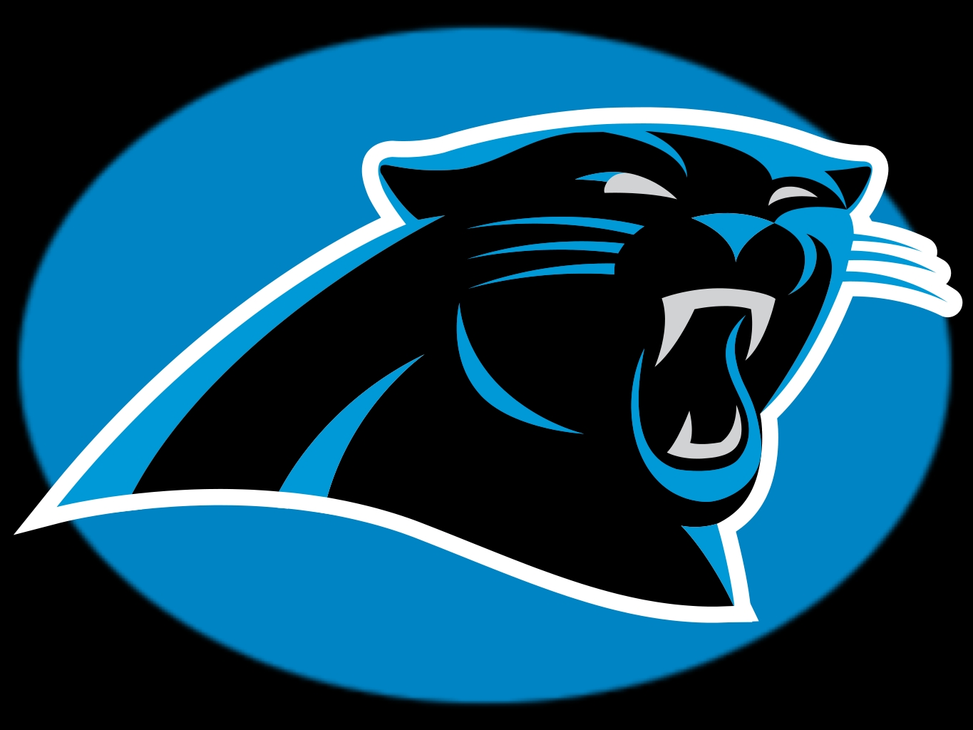 Back Gallery For carolina panthers wallpaper 1365x1024