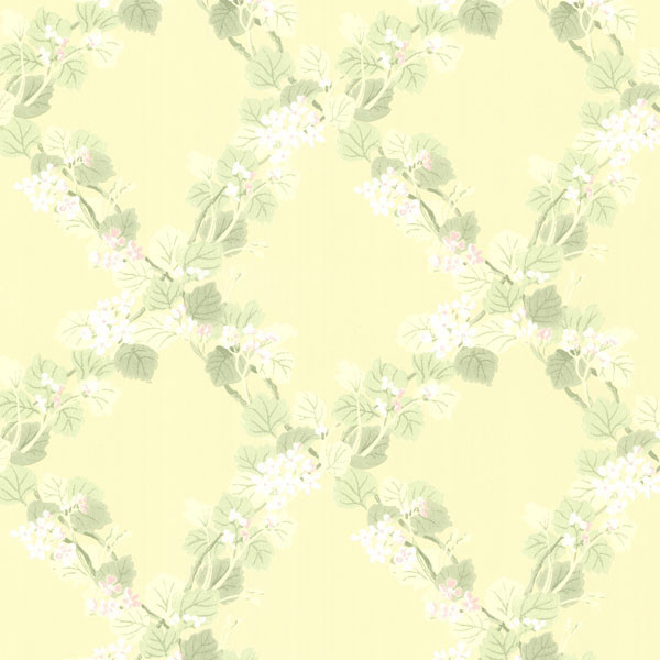 Delphia Yellow Jasmine Trellis Wallpaper   Contemporary   Wallpaper 600x600