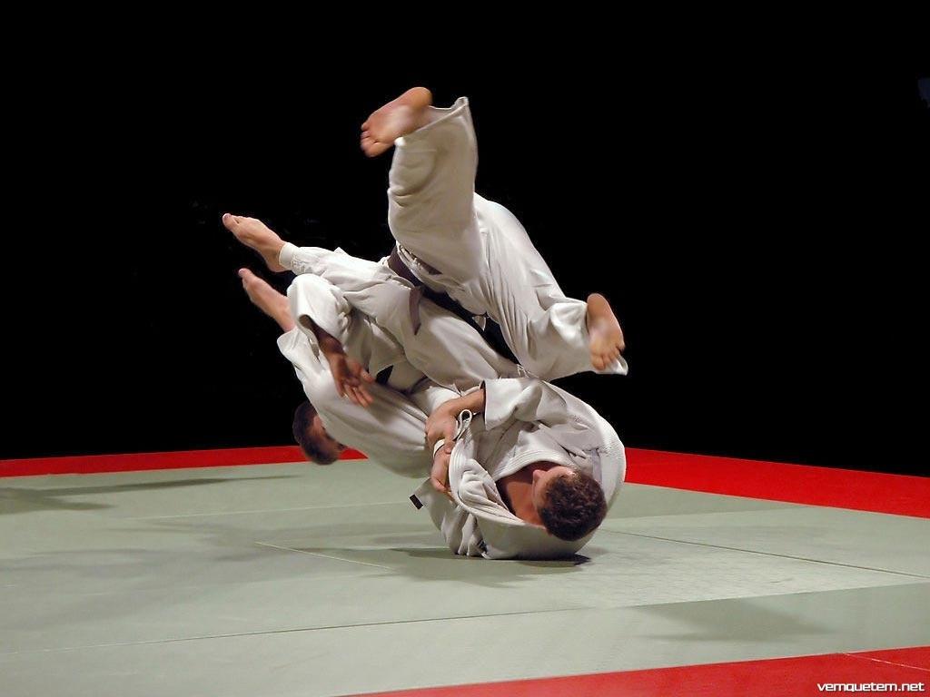 Free Download Jiu Jitsu Wallpaper Wallpapers 1024x768 For