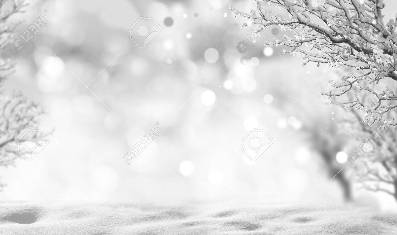 Winter Background Stock Photo Picture And Royalty Image 1300x769