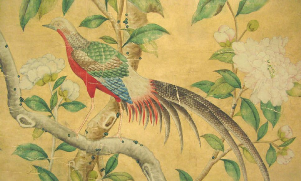 Gracie wallpaper knock off Beautiful birds and blooms on a budget 968x581
