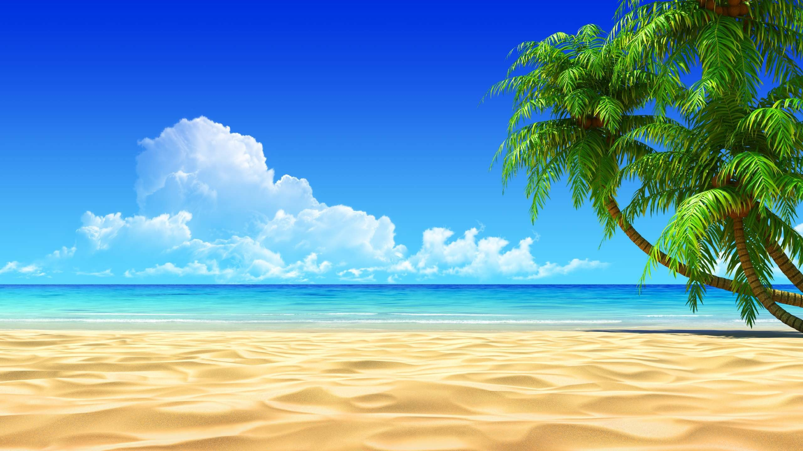 Awesome Tropical Beach Desktop Background HD Wallpaper 2560x1440