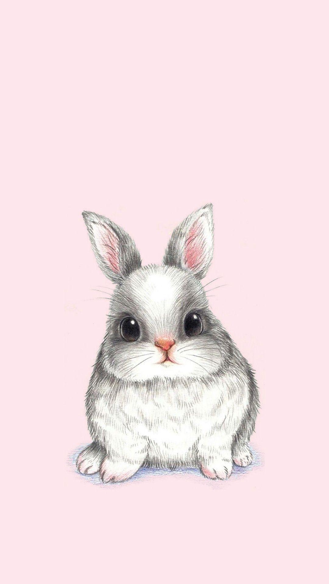 Pin on Rabbit Conejo Lapin Kani Bunny 1080x1920