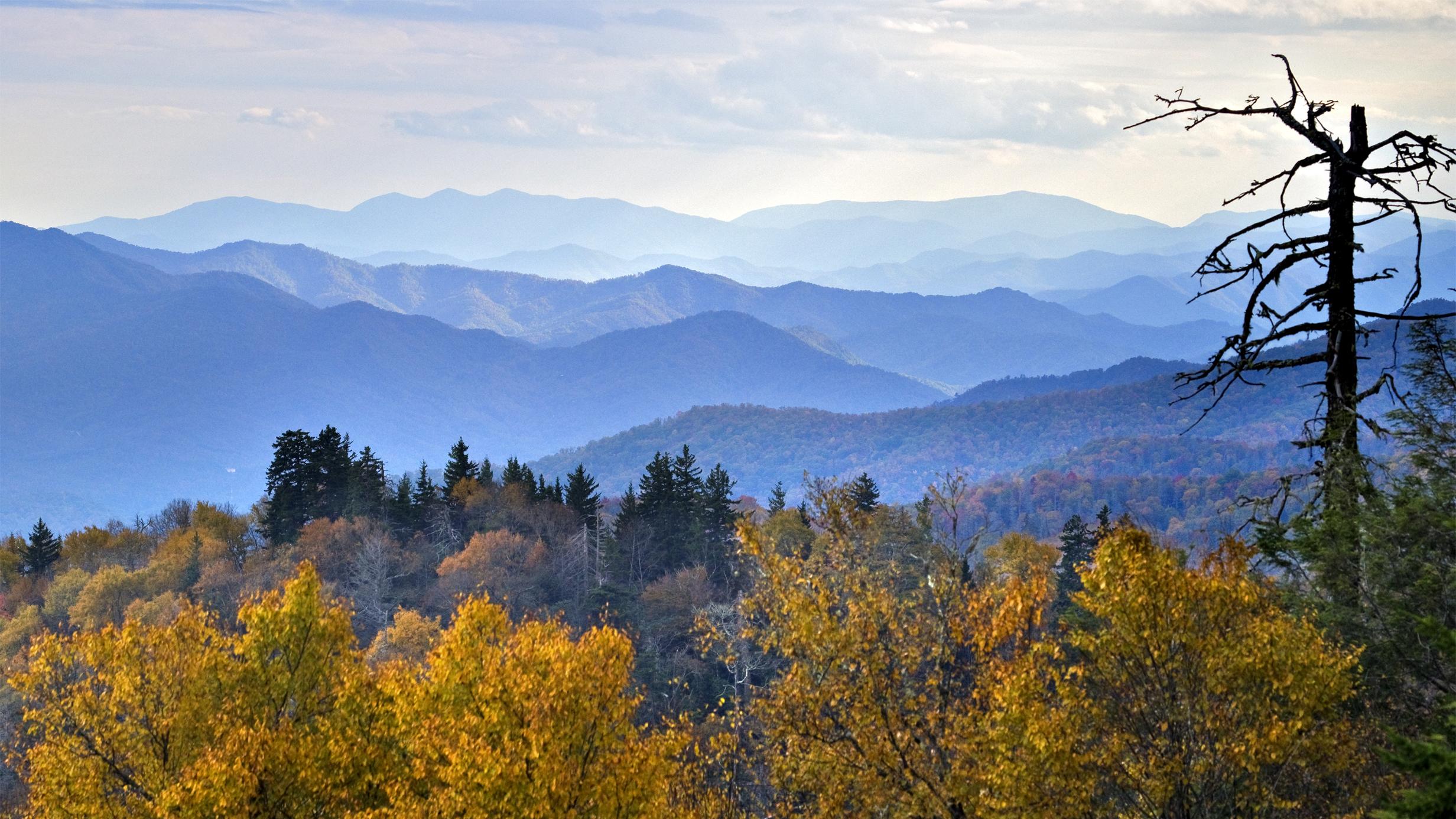 42] Smoky Mountain Wallpaper Desktop on WallpaperSafari 2464x1386