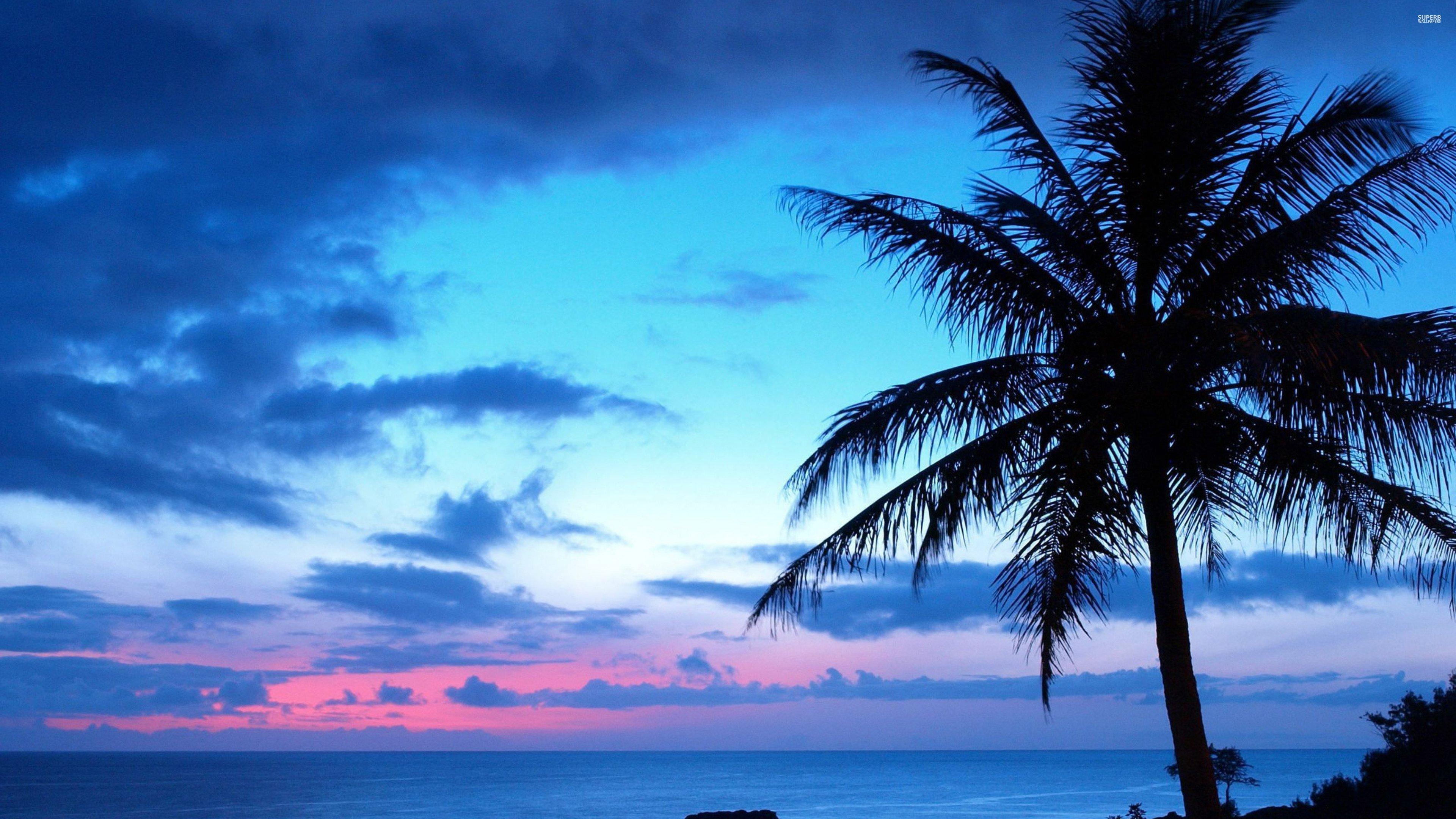 Blue sunset 27271 3840x2160 wallpaper 3840x2160 317469 3840x2160