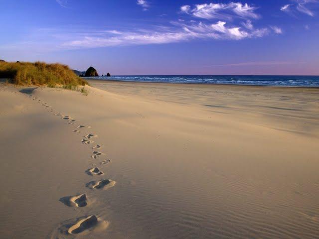 High resolution Footsteps on beach wallpaper in NatureScenery desktop 640x480