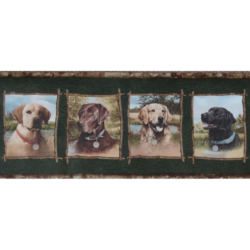Wallpaper Border Animals Nature Framed Labrador Retrievers 800x800