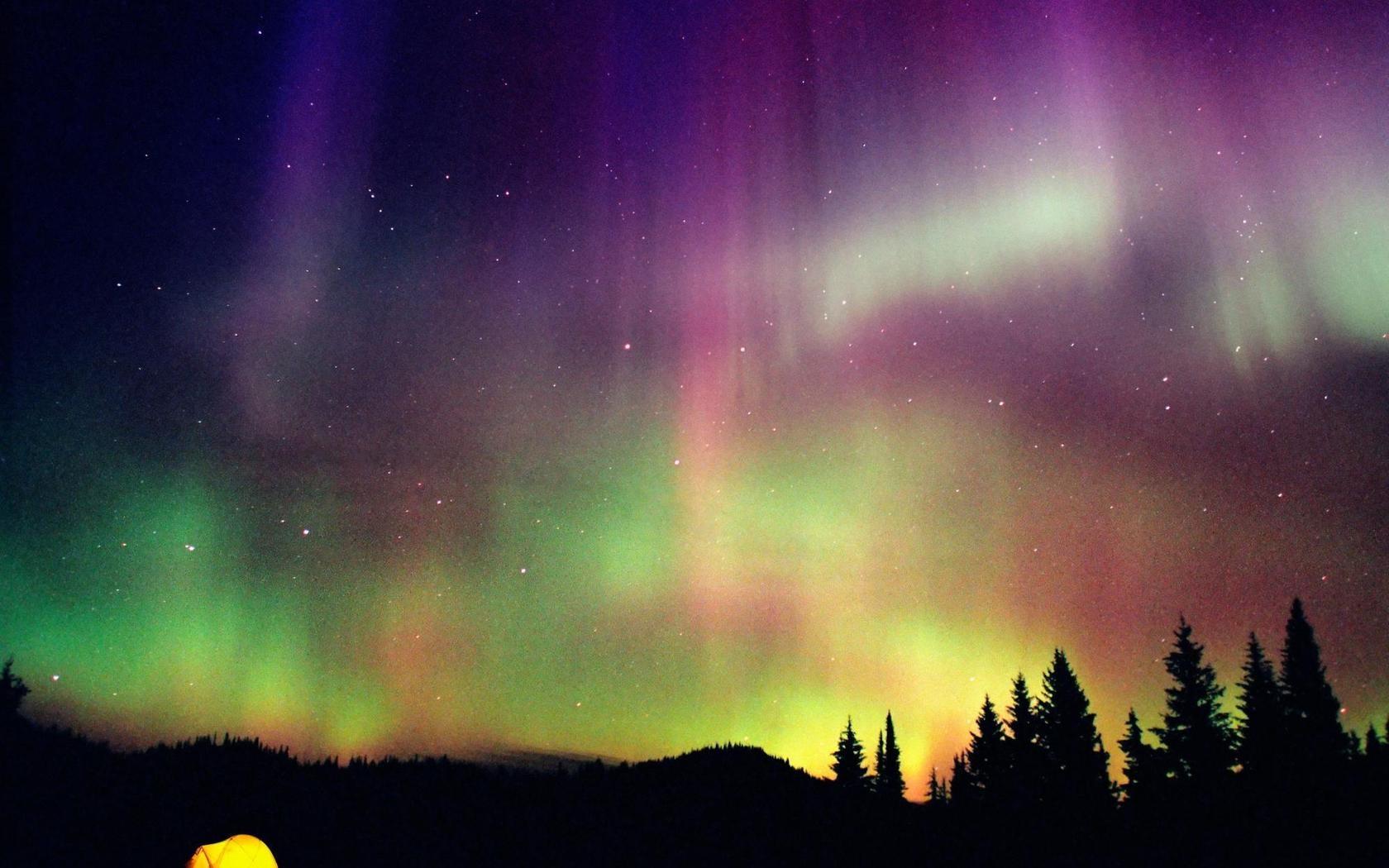 Northern Lights, light, nature, northern, polar, purple
