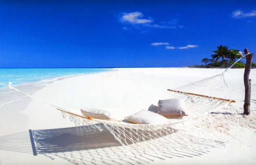 HD Hammock On A White S Beach Maldives Wallpaper 510x330