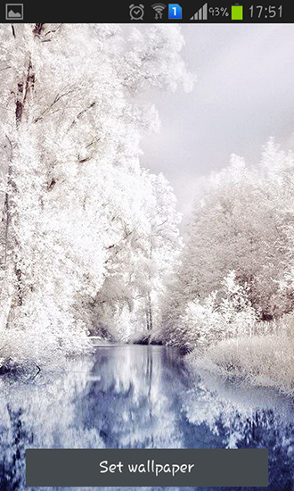 Beautiful winter live wallpaper for Android Beautiful winter 330x550