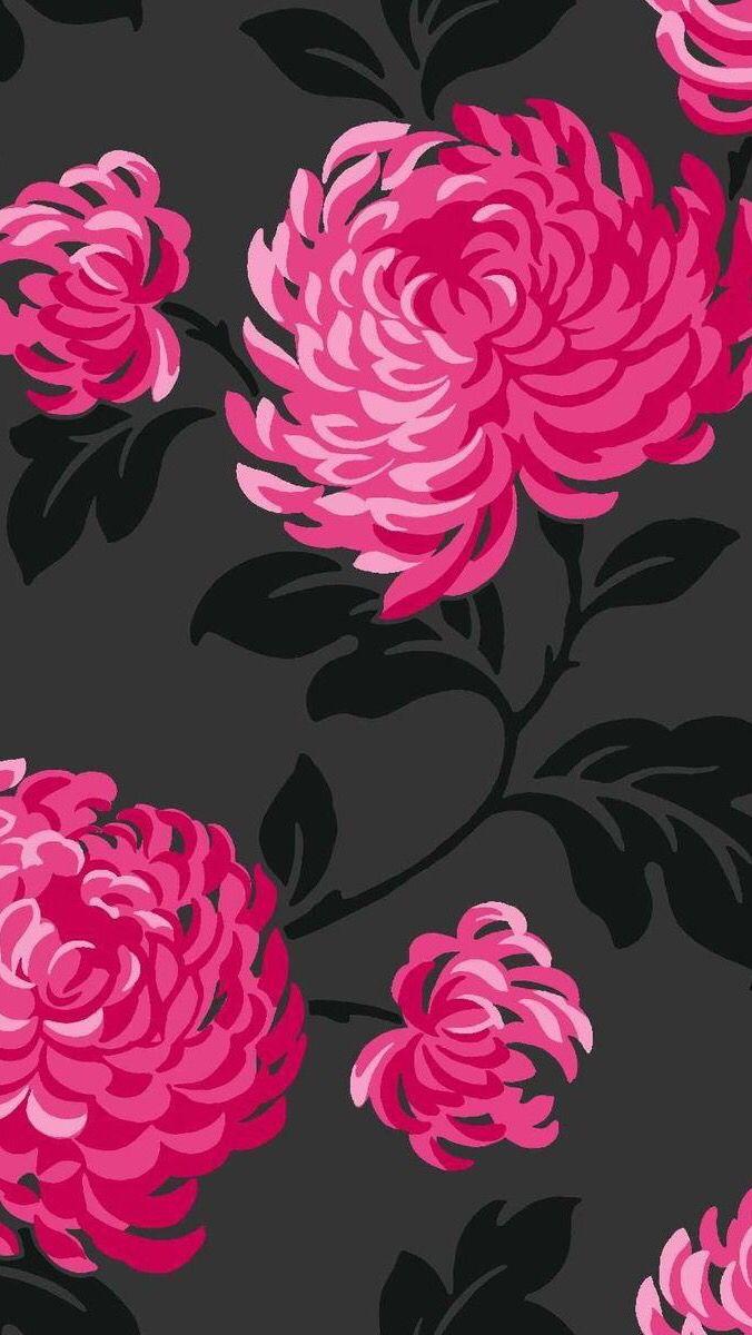 Flowers black hot pink fuschia Pink flowers wallpaper Flower 676x1200