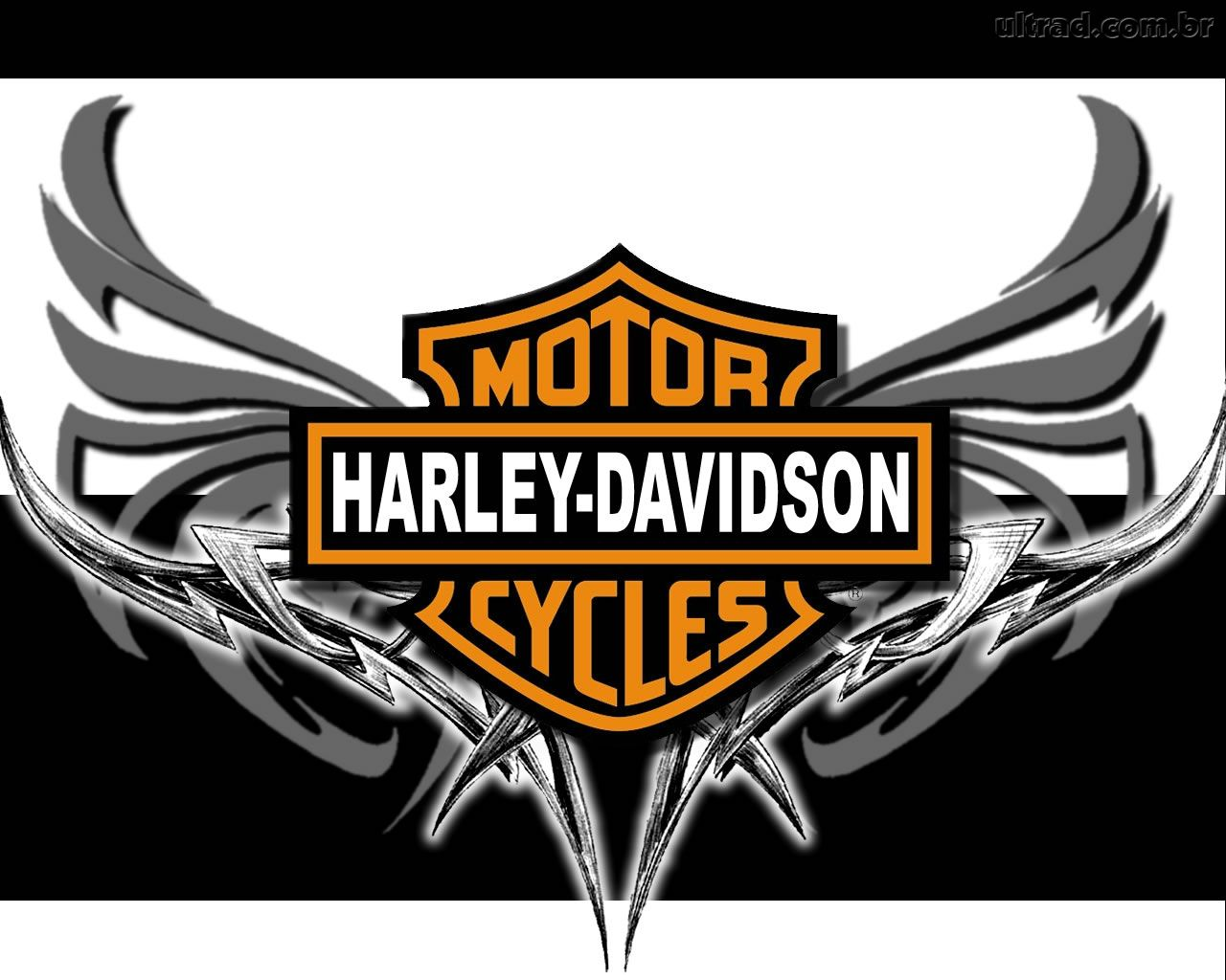 Harley Davidson Wallpaper 6879 Hd Wallpapers in Bikes   Imagescicom 1280x1024