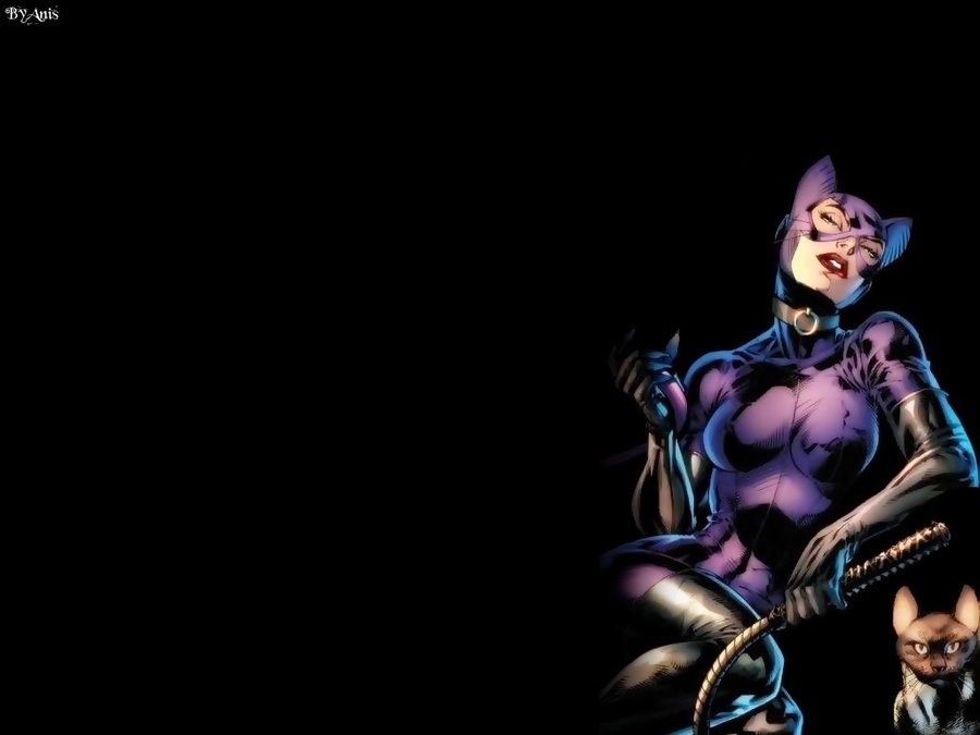 Catwoman Wallpaper HD Walls 900x675