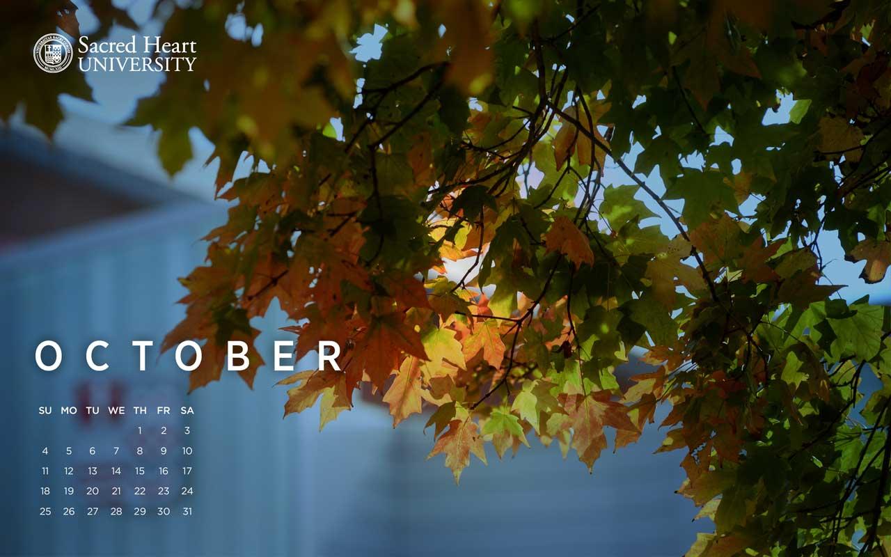SHU Desktop Calendars Sacred Heart University Connecticut 1280x800