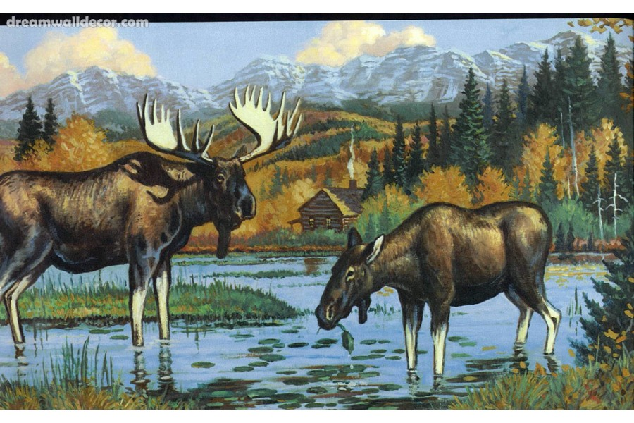 Black Moose Wallpaper Border 900x600