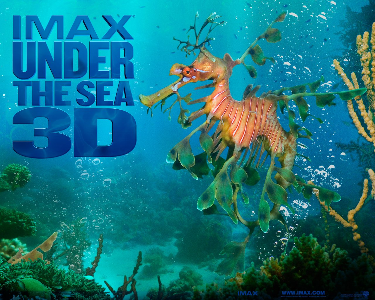 3D Under the Sea Wallpaper - WallpaperSafari