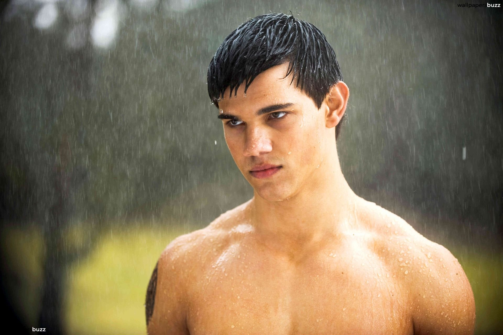 Twilight Jacob Black Wallpaper   Jacob Black 1095952   HD 1920x1278