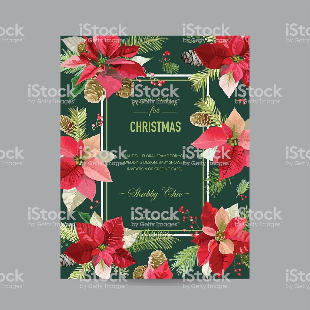 Vintage Poinsettia Christmas Card Winter Background Stock Vector 1024x1024