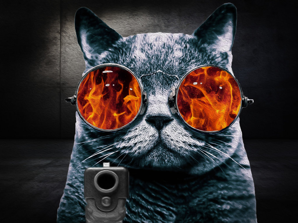 cat glasses Rage Cat oil painting by stevewoods69 1024x768
