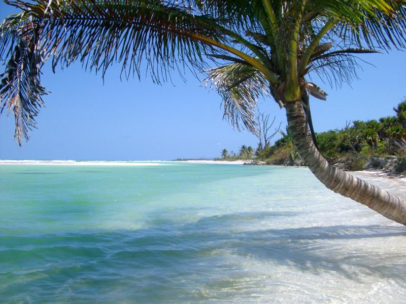 Beaches ePhotos Screensaver1 800x600